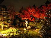 09.12.03-07 京都大阪快樂自由行-第一天:IMG_5028.JPG