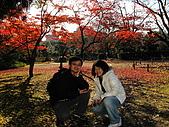 09.12.03-07 京都大阪快樂自由行-第四天:IMG_6401.JPG