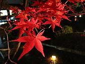 09.12.03-07 京都大阪快樂自由行-第一天:IMG_5049.JPG
