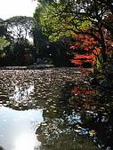 09.12.03-07 京都大阪快樂自由行-第四天:IMG_6453.JPG