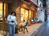 09.12.03-07 京都大阪快樂自由行-第五天:IMG_6682.JPG