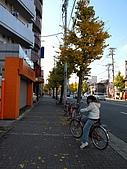 09.12.03-07 京都大阪快樂自由行-第四天:IMG_6356.JPG