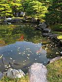 09.12.03-07 京都大阪快樂自由行-第四天:IMG_6377.JPG