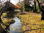 09.12.03-07 京都大阪快樂自由行-第四天:IMG_6385.JPG