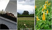 1Y2M29D綠風莊園:綠風莊園5.jpg