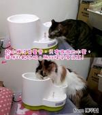 2015~2016貓咪嘗鮮《MOMOCAT》:陳芊x01.jpg