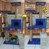 其他商品《MOMOCAT》:D31貓抓柱套管.jpg