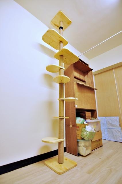 D25_螺旋樓梯.JPG - T系列作品集《MOMOCAT》