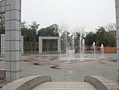 田尾公路花園的繽紛花朵:2011-04-11 13-29-46.JPG