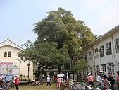 伊甸旗山早療中心成立十週年感恩禮拜:081227136.jpg
