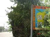 鐵道紀念物或遺跡:糖鐵〝新竹─波羅汶〞線場站遺跡上坑村