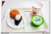 2009北九州櫻花、溫泉還有拉麵之旅Day2_熊本登城:DSC_4997.jpg