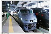 2009北九州櫻花、溫泉還有拉麵之旅Day2_熊本登城:DSC_5004.jpg