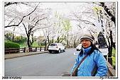 2009北九州櫻花、溫泉還有拉麵之旅Day2_熊本登城:DSC_5024.jpg