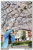 2009北九州櫻花、溫泉還有拉麵之旅Day1_初訪博多:DSC_4725.jpg
