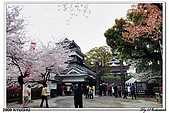 2009北九州櫻花、溫泉還有拉麵之旅Day2_熊本登城:DSC_5035.jpg