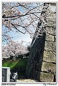 2009北九州櫻花、溫泉還有拉麵之旅Day1_初訪博多:DSC_4738.jpg