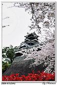 2009北九州櫻花、溫泉還有拉麵之旅Day2_熊本登城:DSC_5038.jpg