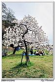 2009北九州櫻花、溫泉還有拉麵之旅Day1_初訪博多:DSC_4742.jpg