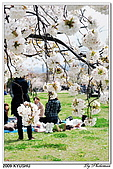 2009北九州櫻花、溫泉還有拉麵之旅Day1_初訪博多:DSC_4743.jpg