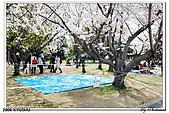 2009北九州櫻花、溫泉還有拉麵之旅Day1_初訪博多:DSC_4758.jpg