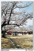 2009北九州櫻花、溫泉還有拉麵之旅Day1_初訪博多:DSC_4760.jpg