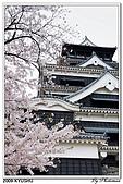 2009北九州櫻花、溫泉還有拉麵之旅Day2_熊本登城:DSC_5089.jpg