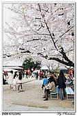 2009北九州櫻花、溫泉還有拉麵之旅Day2_熊本登城:DSC_5092.jpg