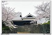 2009北九州櫻花、溫泉還有拉麵之旅Day2_熊本登城:DSC_5105.jpg