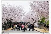 2009北九州櫻花、溫泉還有拉麵之旅Day2_熊本登城:DSC_5122.jpg