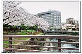 2009北九州櫻花、溫泉還有拉麵之旅Day2_熊本登城:DSC_5134.jpg