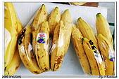 2009北九州櫻花、溫泉還有拉麵之旅Day2_熊本登城:DSC_5168.jpg