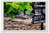 20140529九州:nEO_IMG_T2.jpg