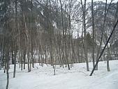200804-[日本]北陸立山雪壁之旅-第3天(4/17):20080417-003.JPG