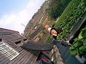971216-1218漂鳥喜鵲營:影像007.jpg