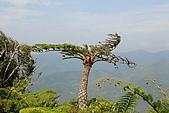 帽子山:DSC_0158.JPG