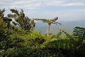 帽子山:DSC_0159.JPG