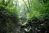 帽子山:DSC_0163.JPG