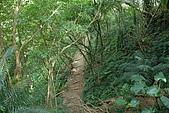 帽子山:DSC_0175.JPG