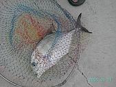 釣魚:p88