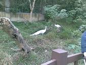 萬壽山動物園:ABCD0003