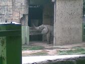 萬壽山動物園:ABCD0008