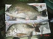 釣魚:p46