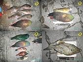 釣魚:p68