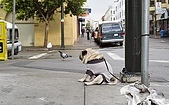 CG圖庫:可憐的狗狗..一臉無辜的表情01.jpg