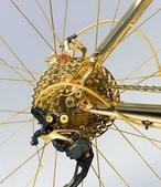 網路圖片:喜歡自行車,但不喜歡這輛!太晃眼了2.jpeg