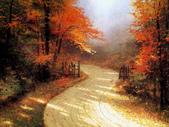 與大自然同住:溫馨田園風景油畫4-1.jpg