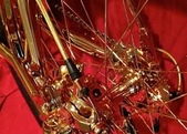 網路圖片:喜歡自行車,但不喜歡這輛!太晃眼了7.jpeg