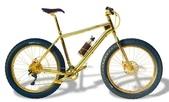 網路圖片:喜歡自行車,但不喜歡這輛!太晃眼了1.jpeg