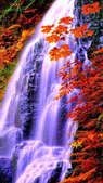 绵绵细水瀑布流:绵绵细水瀑布流 (1).jpg